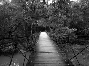 bridge-668985_1280